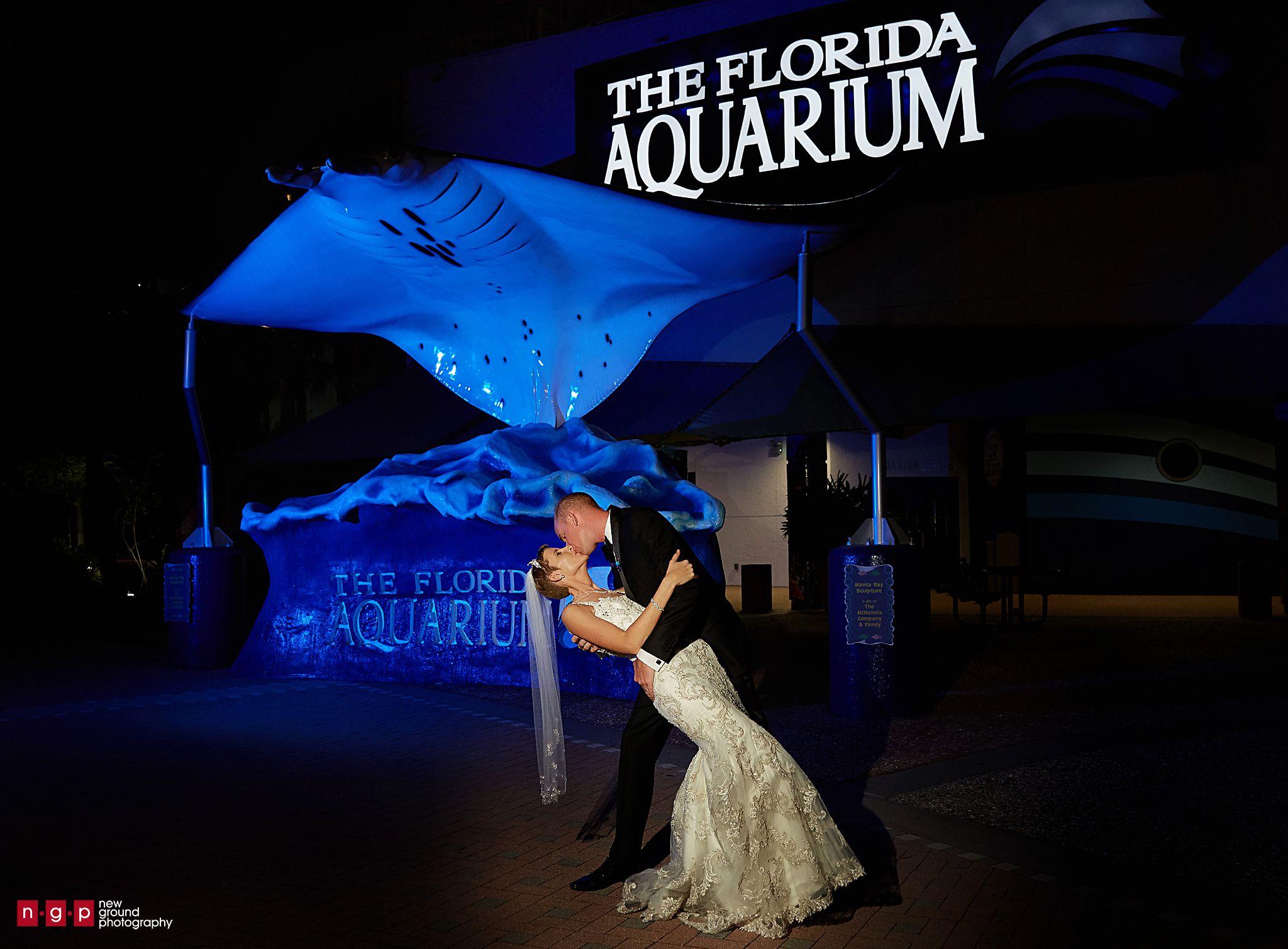The Florida Aquarium Wedding