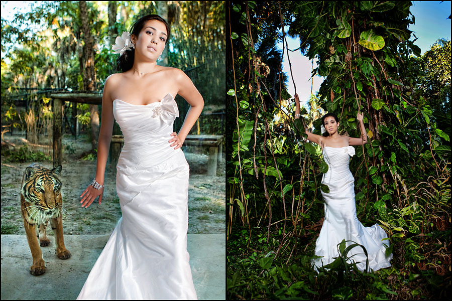 Permalink to Florida Botanical Gardens Wedding